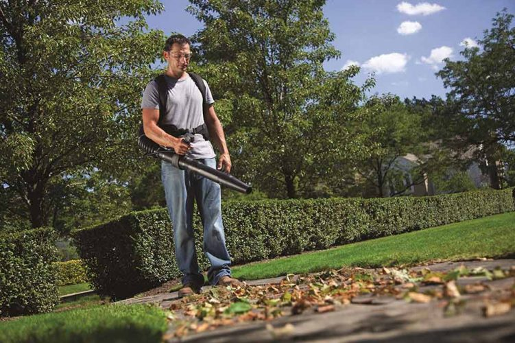 Best backpack leaf blower for clearing the yard