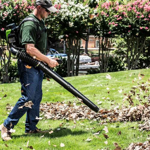 backpack leaf blower - Best garden tool for clearing leaves