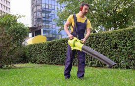 Do Leaf Blowers Work on Wet Leaves?