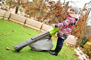 Gas vs Electric Leaf Blower: Which One Do You Choose?