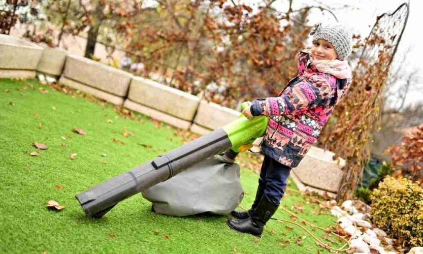 Gas vs. Electric Which Leaf Blowers to Choose