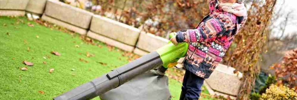 Gas vs. Electric: Which Leaf Blower Do You Choose?