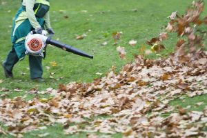 How Do Leaf Blowers Work?