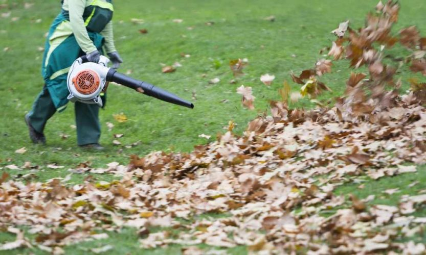 How Do Leaf Blowers Work