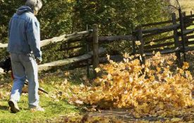 Black and Decker LSW20 Cordless Leaf Blower/Sweeper Review