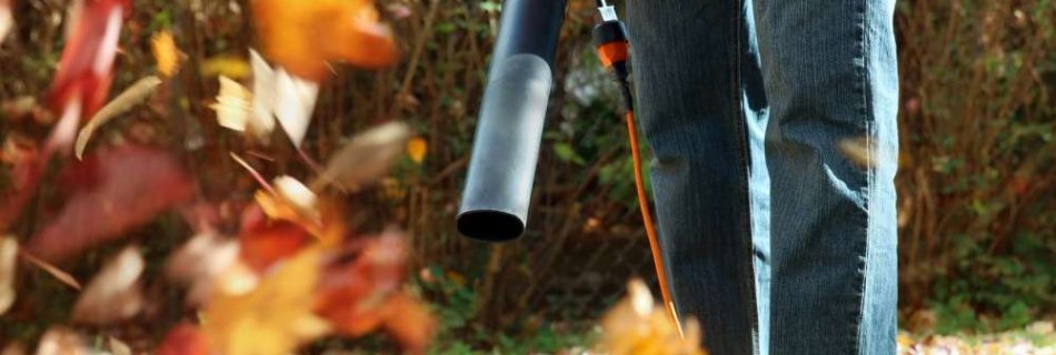 Husqvarna 125B Gas Powered Leaf Blower Review
