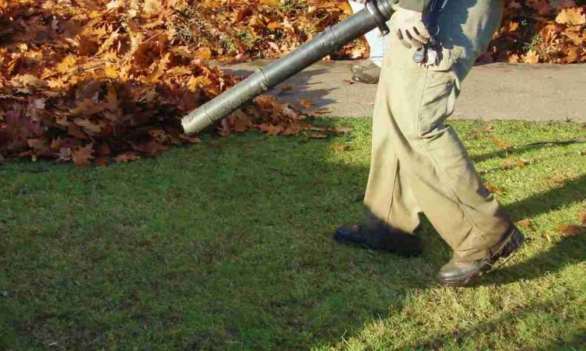 Husqvarna Backpack Leaf Blower Review