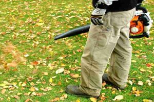 Remington Leaf Blower RM125 Gas Handheld Leaf Blower Review
