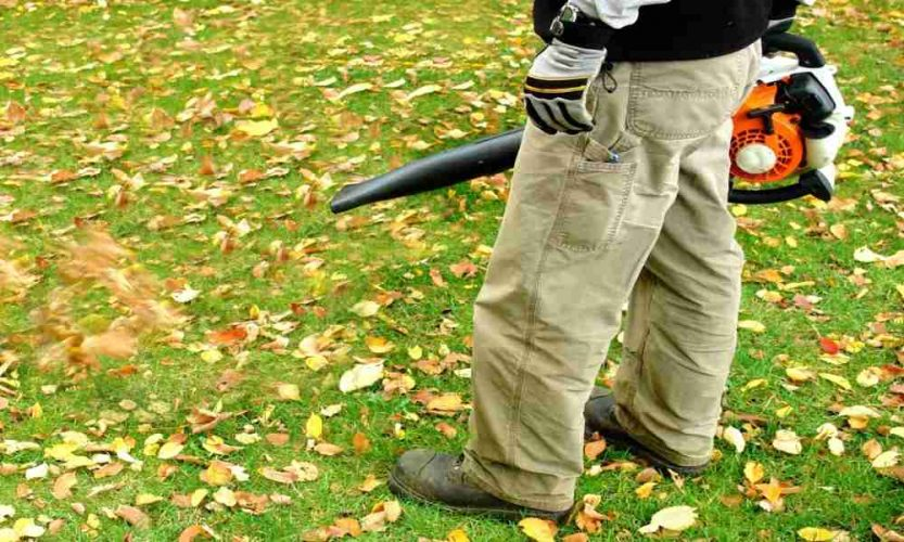 The Remington RM125 Gas Handheld Leaf Blower Review