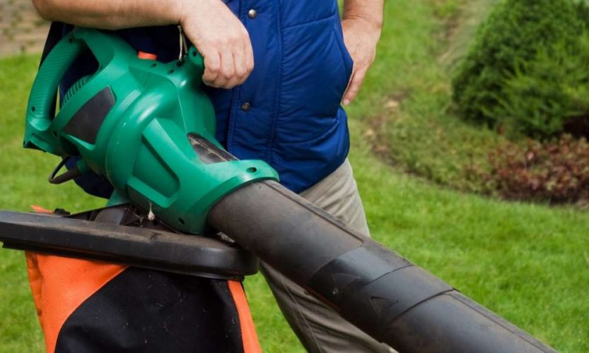 What are the Different Types of Leaf Blowers