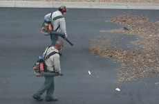 Best Backpack Leaf Blowers