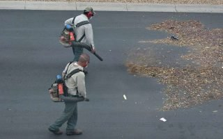 Why Is It Advantageous To Choose Backpack Leaf Blowers?