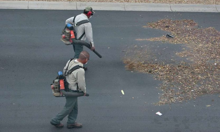 Why is It Advantageous to Choose Backpack Leaf Blowers