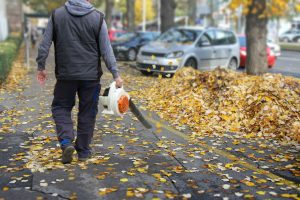 Choosing the Best Cordless Leaf Blower