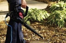 Comparison of Different Types of Leaf Blowers: Electric vs Gas-Powered