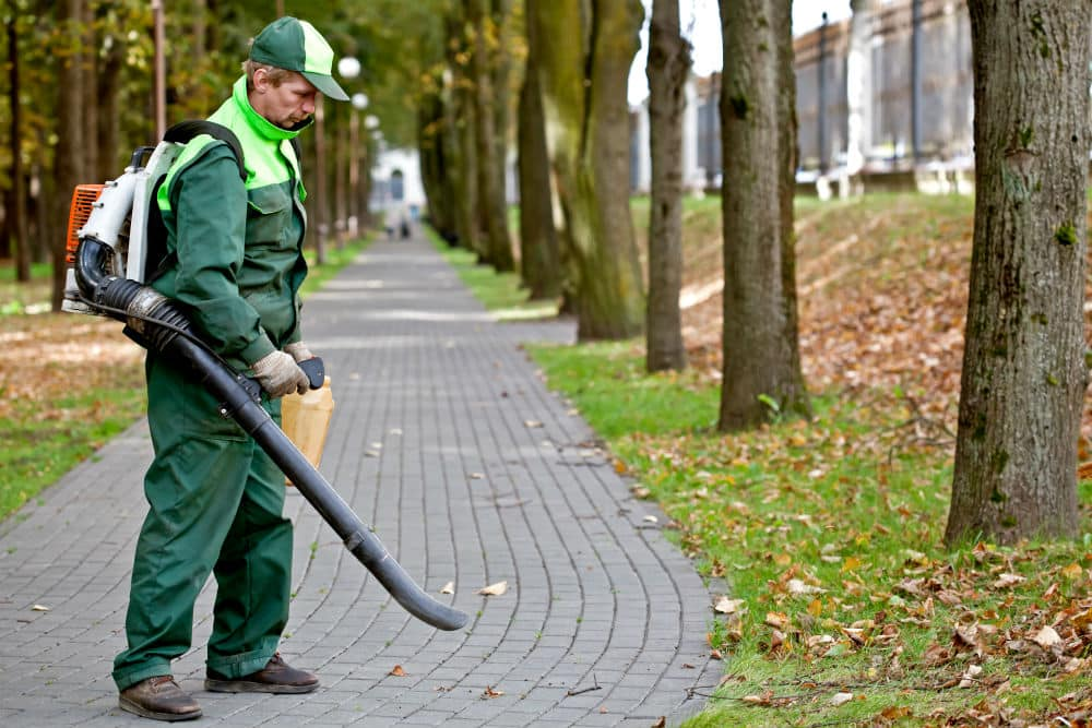 what-is-a-good-cfm-for-a-leaf-blower-your-guide-to-buying-the-right-one