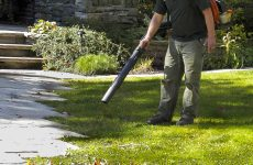 Finding the Best Leaf Blower: Facts You Should Know Before Buying One