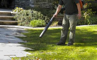 Finding the Best Leaf Blower: Facts You Should Know Before Buying