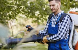 Best Safety Glasses For Operating a Leaf Blower
