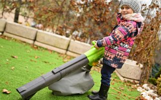 2 of the Best Leaf Vacuum Mulcher Models – Under $ 90.00!