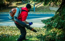 Echo Backpack Leaf Blower PB-580T Review