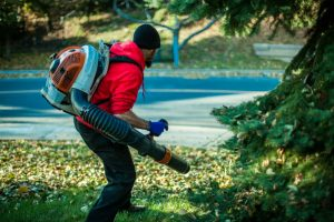 Echo PB-580T Backpack Blower Review