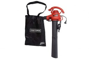 Craftsman Leaf Blower CMEBL700 Review