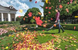 Worx WG546 Cordless Leaf Blower Review