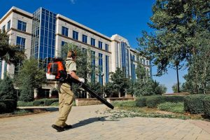 8 Best Commercial Leaf Blower Reviews