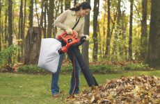 Best Leaf Blowers For Pine Needles