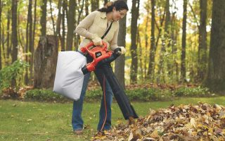 Best Leaf Blowers For Pine Needles: 5 Product Reviews